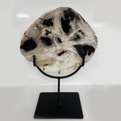 petrified-wood-semi-precious-stone-on-stand-ornament